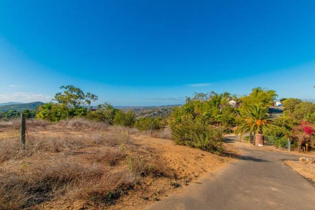 Wilt Rd #0, Fallbrook, CA 92028 (#190003822) :: Allison James Estates and Homes