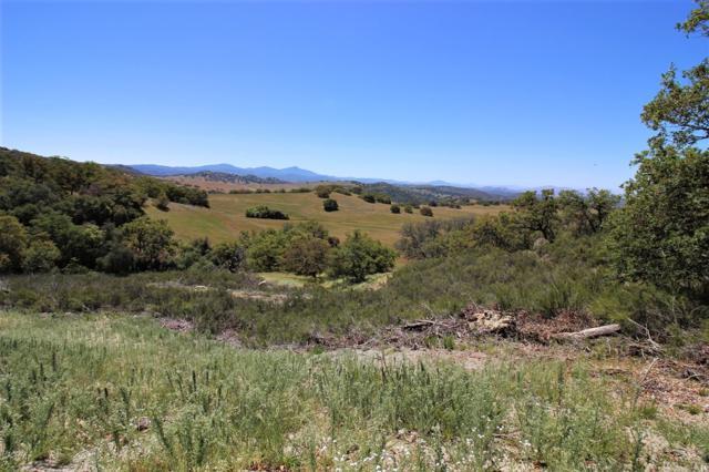 0 Mesa Grande Rd. #0, Santa Ysabel, CA 92070 (#190003958) :: Coldwell Banker Residential Brokerage