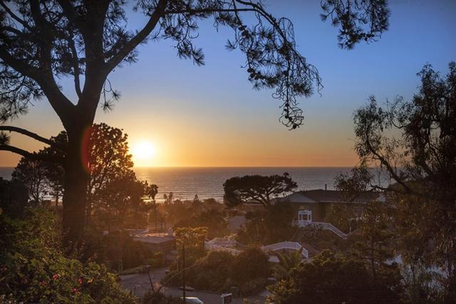 1925 Balboa Ave #1, Del Mar, CA 92014 (#190004040) :: Coldwell Banker Residential Brokerage