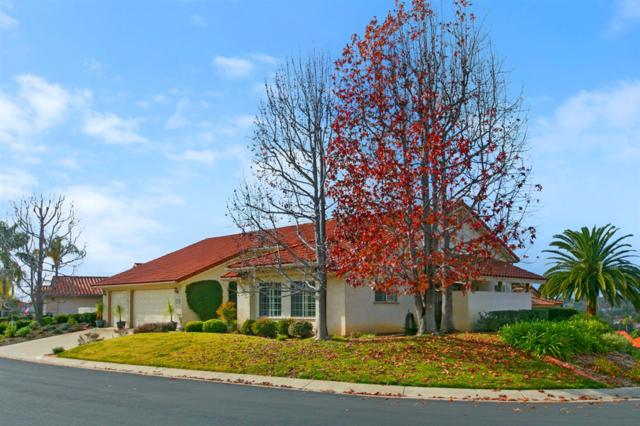 1019 Ridge Heights Dr., Fallbrook, CA 92028 (#190004092) :: Whissel Realty
