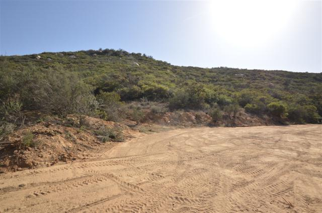 10.66 AC Skyline Tr Tr #4, Jamul, CA 91935 (#190004175) :: Coldwell Banker Residential Brokerage