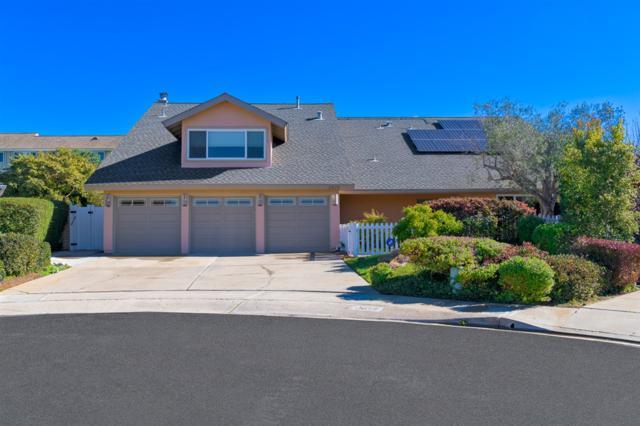 2875 Sugarman Way, La Jolla, CA 92037 (#190004710) :: Coldwell Banker Residential Brokerage