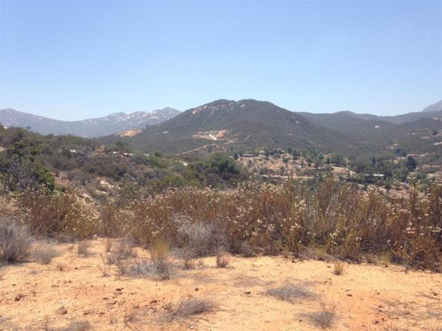 00 Standing Rock Rd. #260, Jamul, CA 91935 (#190005704) :: Whissel Realty