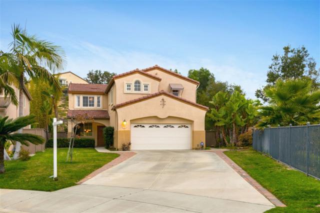 3328 Rancho Carrizo, Carlsbad, CA 92009 (#190006391) :: Whissel Realty