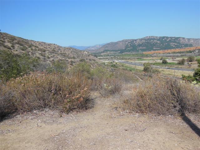 NKA Pala Rd./Star Track #17, Fallbrook, CA 92028 (#190006400) :: Neuman & Neuman Real Estate Inc.