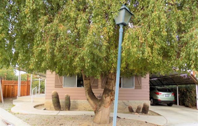 1010 Palm Canyon Drive #99 #99, Borrego Springs, CA 92004 (#190006610) :: Neuman & Neuman Real Estate Inc.