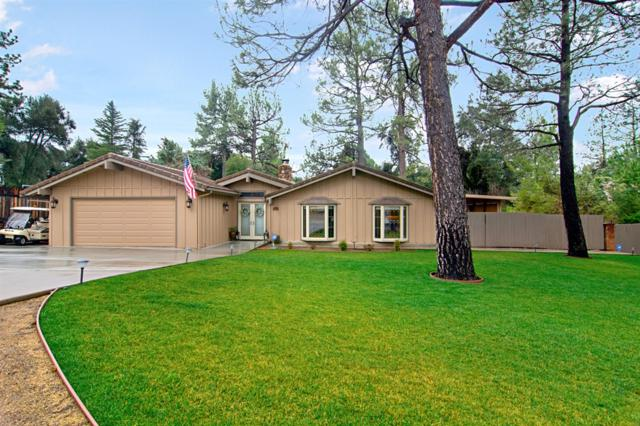 29047 Rocky Pass, Pine Valley, CA 91962 (#190007372) :: Whissel Realty