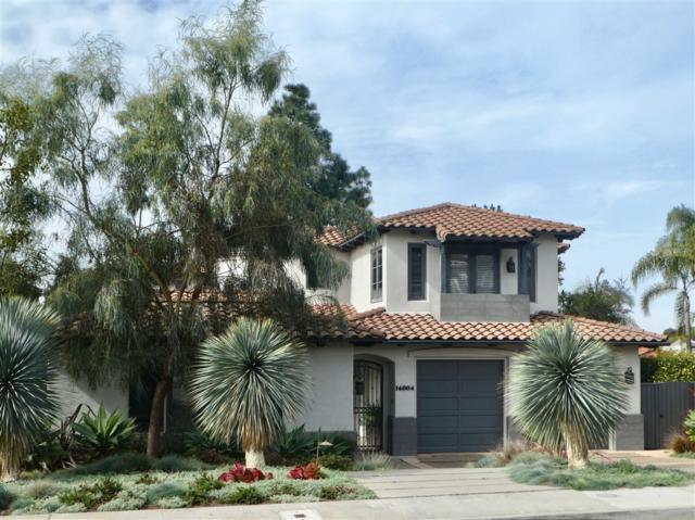14004 Mercado Drive, Del Mar, CA 92014 (#190007552) :: Coldwell Banker Residential Brokerage