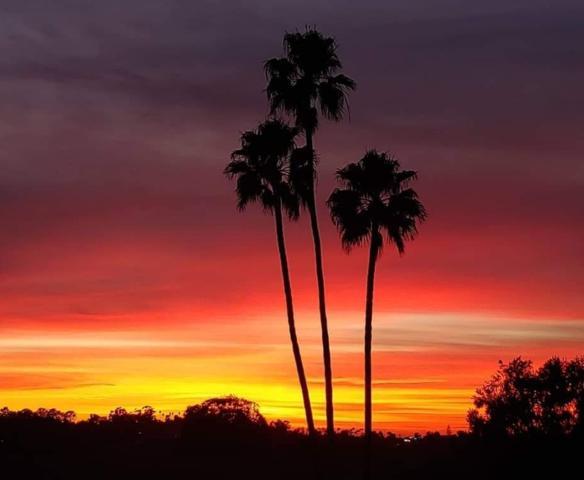 3685 Vista Campana N #29, Oceanside, CA 92057 (#190007570) :: Welcome to San Diego Real Estate