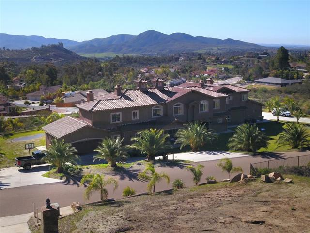 14749 Ur Ln, Jamul, CA 91935 (#190007585) :: Whissel Realty