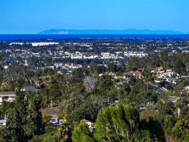 2465 Catalina Ave, Vista, CA 92084 (#190007734) :: Farland Realty