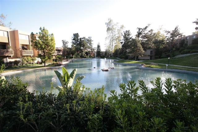 5700 Baltimore Dr #227, La Mesa, CA 91942 (#190007790) :: Neuman & Neuman Real Estate Inc.