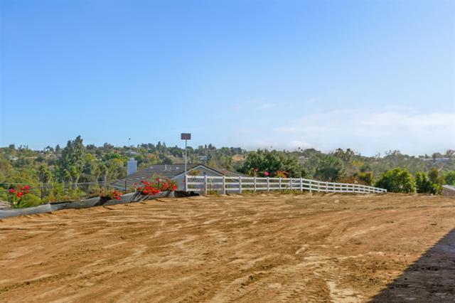 1402 Devin Dr, Fallbrook, CA 92028 (#190008438) :: Neuman & Neuman Real Estate Inc.