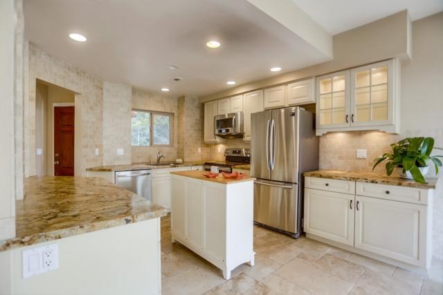162 Las Banderas Dr, Solana Beach, CA 92075 (#190008675) :: Neuman & Neuman Real Estate Inc.