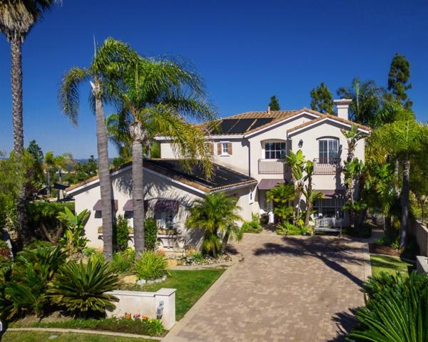 6714 Lemon Leaf Drive, Carlsbad, CA 92011 (#190008901) :: Allison James Estates and Homes