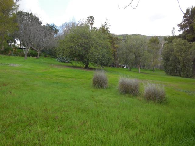5556 Dehesa Rd., El Cajon, CA 92019 (#190009105) :: Neuman & Neuman Real Estate Inc.