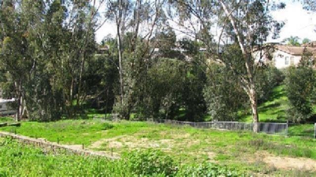 3335 NE Laurashawn Lane #29, Escondido, CA 92026 (#190009240) :: Coldwell Banker Residential Brokerage
