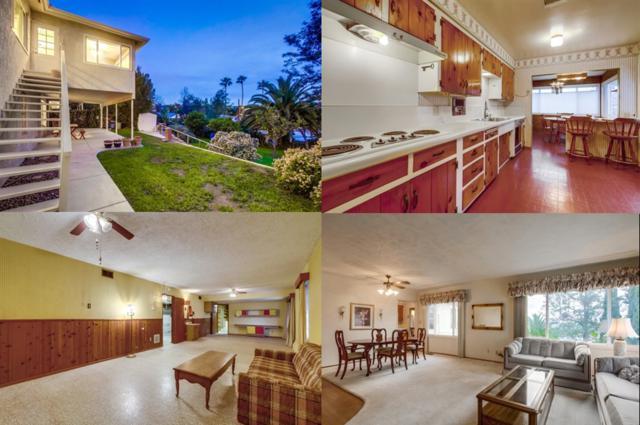 4360 Maple Ave, La Mesa, CA 91941 (#190009497) :: Keller Williams - Triolo Realty Group