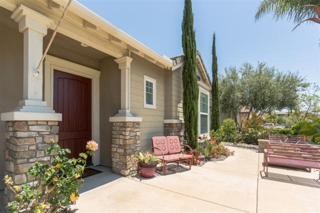 747 Agua Vista Dr, Chula Vista, CA 91914 (#190009518) :: Cane Real Estate