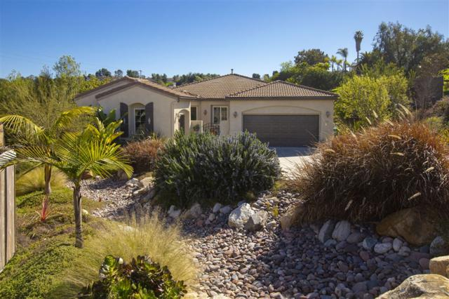 322 Mission View Way, Oceanside, CA 92057 (#190009888) :: Ascent Real Estate, Inc.