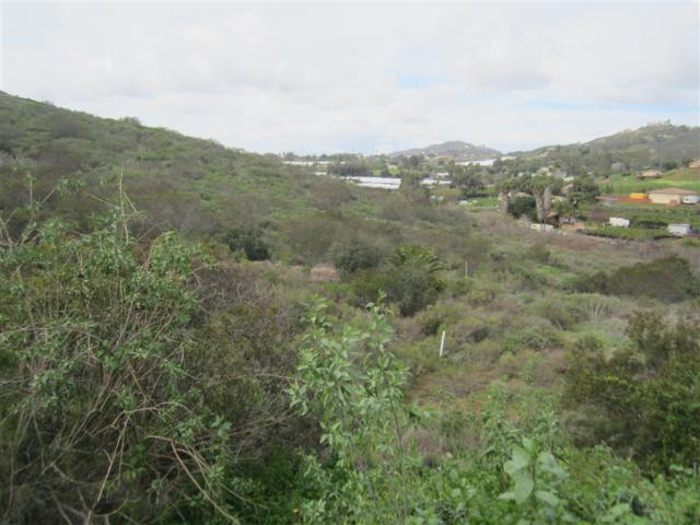 000 W La Cienega Road Par 3 Tr 4843 Par 3 Tr 4843, San Marcos, CA 92069 (#190009927) :: Ascent Real Estate, Inc.