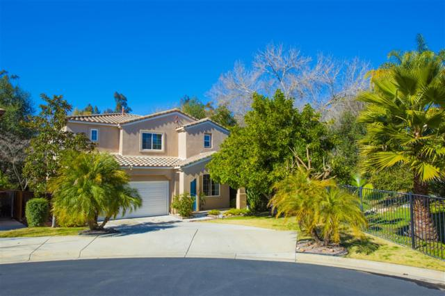 1002 Crystal Springs Pl, Escondido, CA 92026 (#190009995) :: Welcome to San Diego Real Estate