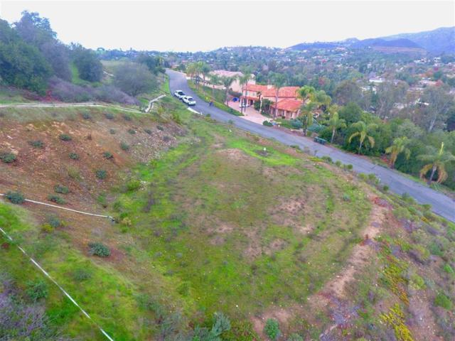 3419 Sagewood Hills Rd #3, Vista, CA 92084 (#190010264) :: Neuman & Neuman Real Estate Inc.
