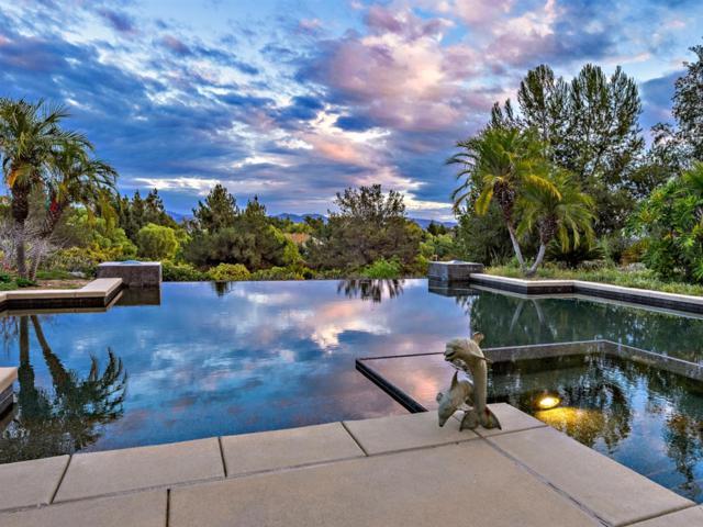 3891 Wendi Ct, Fallbrook, CA 92028 (#190010588) :: Coldwell Banker Residential Brokerage