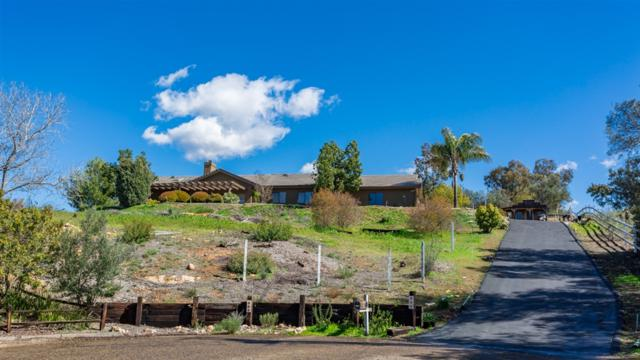 2299 Corine Way, Alpine, CA 91901 (#190010686) :: Coldwell Banker Residential Brokerage