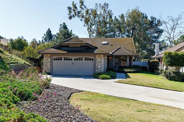 1245 Hatcreek Ct, Vista, CA 92081 (#190010853) :: Neuman & Neuman Real Estate Inc.