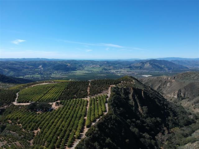 0000 N Mesa Dr #1, Pauma Valley, CA 92061 (#190011022) :: Keller Williams - Triolo Realty Group
