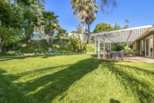 2915 Bonita Mesa Rd, Bonita, CA 91902 (#190011520) :: Coldwell Banker Residential Brokerage