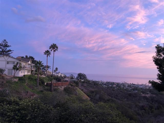 6111 Havenhurst Place, La Jolla, CA 92037 (#190011619) :: Whissel Realty
