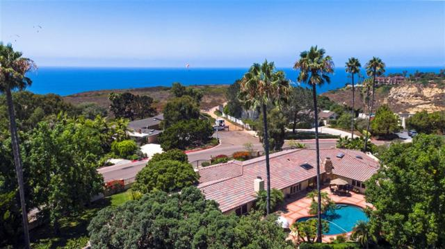 9351 La Jolla Farms Road, La Jolla, CA 92037 (#190011800) :: Whissel Realty