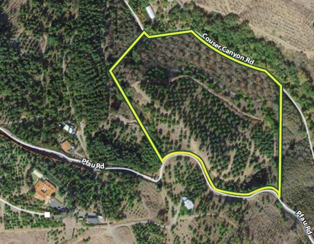 0000 Pfau Road #1, Valley Center, CA 92082 (#190012206) :: Pugh | Tomasi & Associates