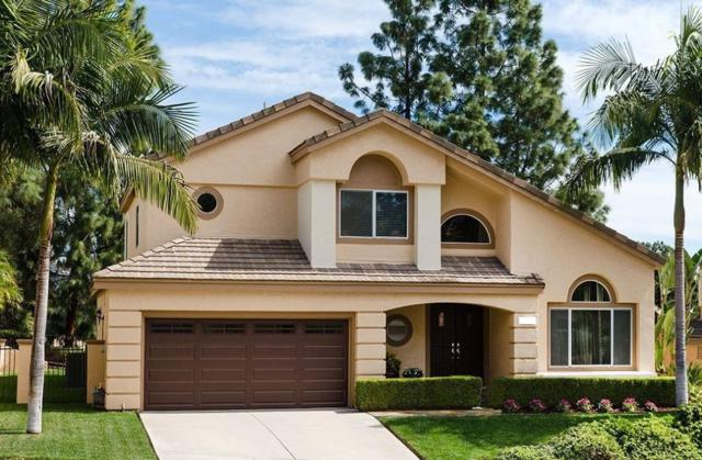 14025 Chestnut Hill Ln, San Diego, CA 92128 (#190012373) :: Coldwell Banker Residential Brokerage