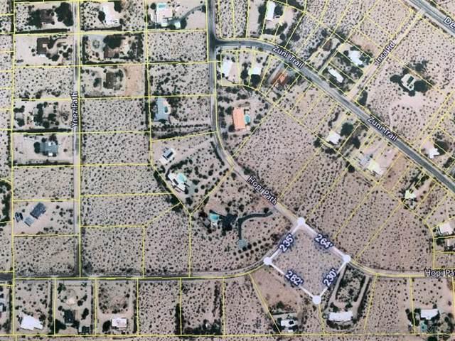 69 Hopi Path #69, Borrego Springs, CA 92004 (#190012480) :: Neuman & Neuman Real Estate Inc.