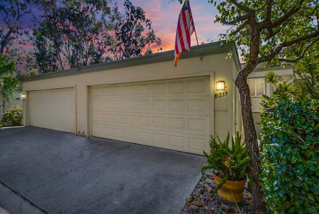 10239 Caminito Covewood, San Diego, CA 92131 (#190012681) :: Neuman & Neuman Real Estate Inc.
