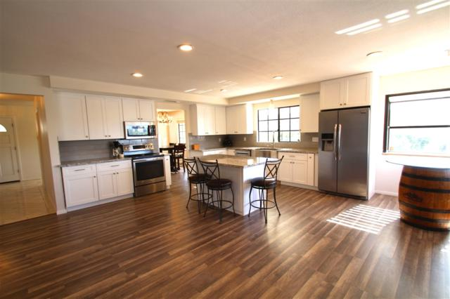 1020 Little Gopher Canyon Rd, Vista, CA 92084 (#190013627) :: Coldwell Banker Residential Brokerage