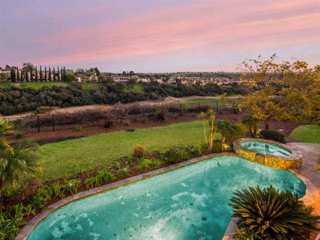 5743 Meadows Del Mar, San Diego, CA 92130 (#190013770) :: Coldwell Banker Residential Brokerage
