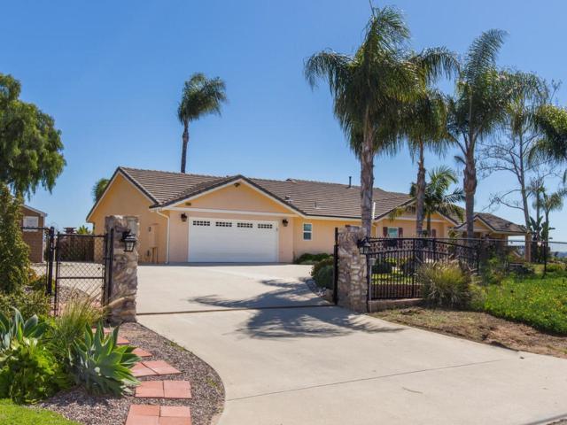 3044 Alta Vista Dr, Fallbrook, CA 92028 (#190014159) :: Neuman & Neuman Real Estate Inc.
