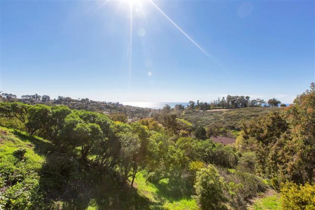 7060 Caminito Manresa, La Jolla, CA 92037 (#190014410) :: Coldwell Banker Residential Brokerage