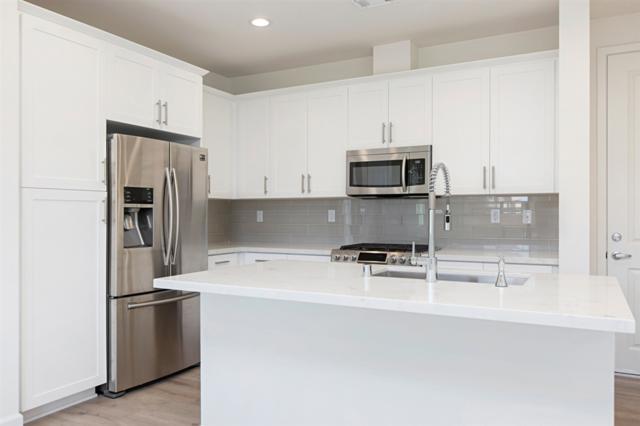 3111 Simba Way, Carlsbad, CA 92010 (#190014973) :: Ascent Real Estate, Inc.
