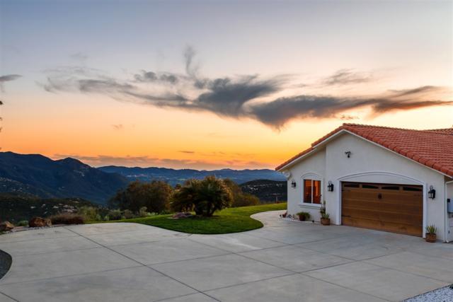 31930 Calle El Potrero, Pauma Valley, CA 92061 (#190015005) :: Neuman & Neuman Real Estate Inc.