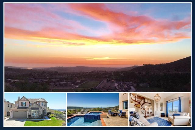 1604 Trenton Way, San Marcos, CA 92078 (#190015022) :: Keller Williams - Triolo Realty Group