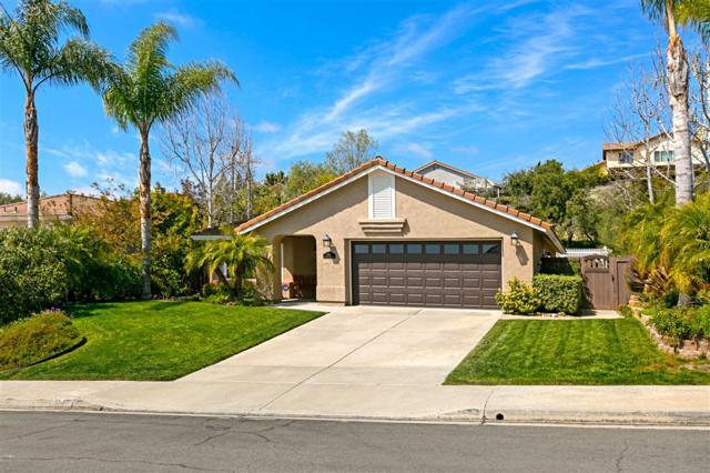 3286 Avenida Anacapa, Carlsbad, CA 92009 (#190015025) :: Cane Real Estate