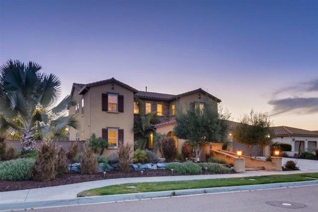1816 Plaza Arbolitos, Chula Vista, CA 91914 (#190015078) :: Cane Real Estate
