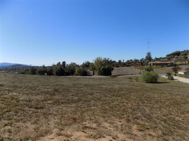 00 Birch Ave. 190/A, Escondido, CA 92027 (#190015173) :: Ascent Real Estate, Inc.