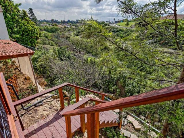 5075 Lyle Drive, San Diego, CA 92105 (#190015334) :: Coldwell Banker Residential Brokerage