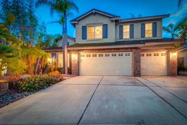 2637 Coyote Ridge Terrace, Chula Vista, CA 91915 (#190015418) :: Allison James Estates and Homes